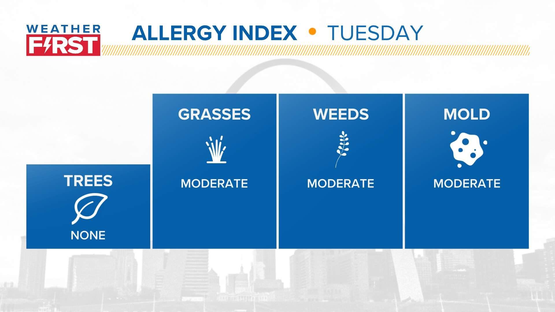 Allergy Index