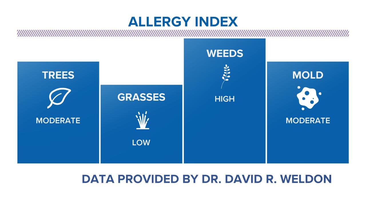 Allergy Report