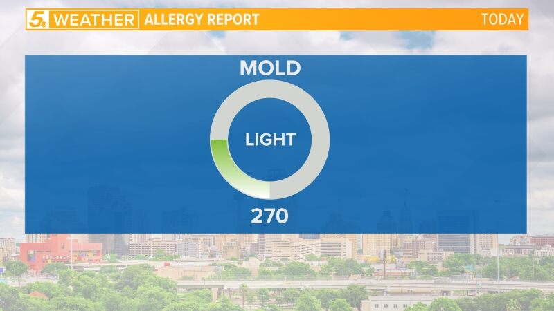Today's Pollen Count